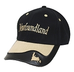 Two Tone Cap with Vinyl Trim - Map - Black