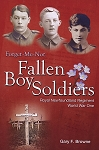 Fallen Boy Soldiers - Gary Browne